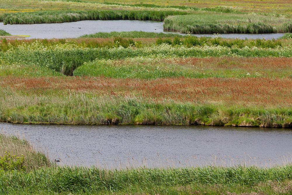 De Zandkes, Texel