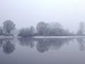 Mist in de Ooypolder