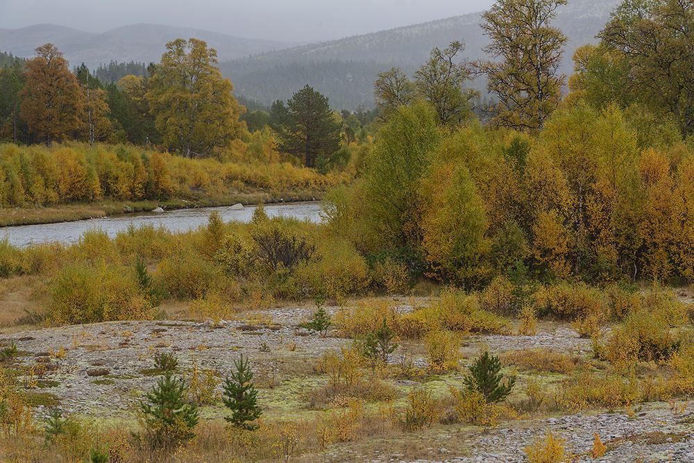 Rivierlandschap, NP-Rondane