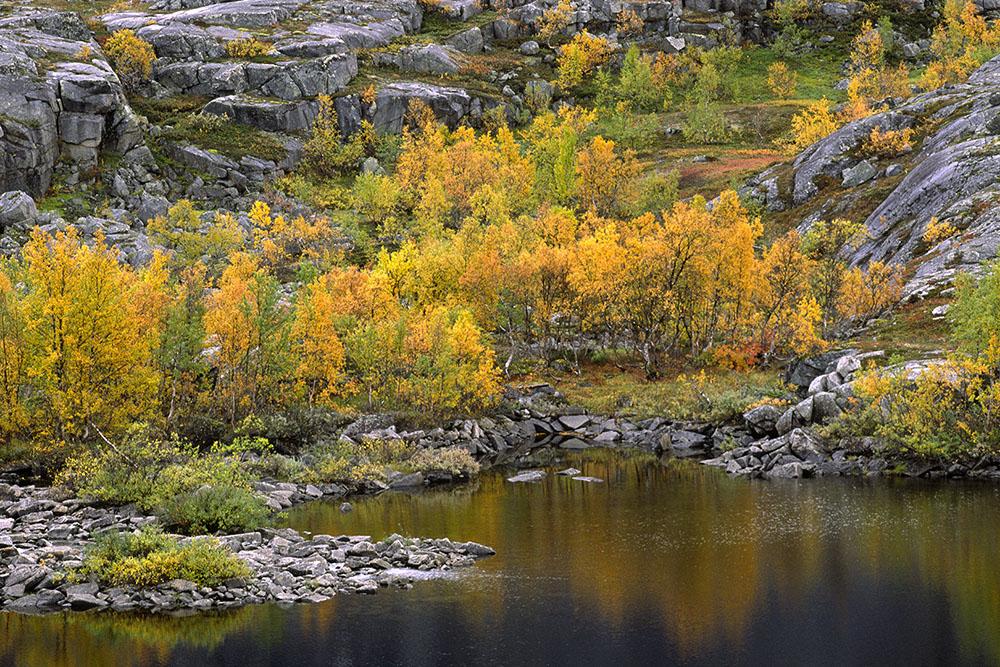 Herfstmeer, Noors Lapland