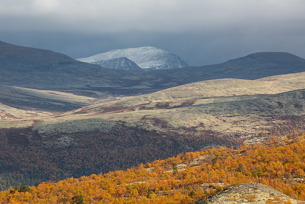 Sneeuwberg, Doralseter