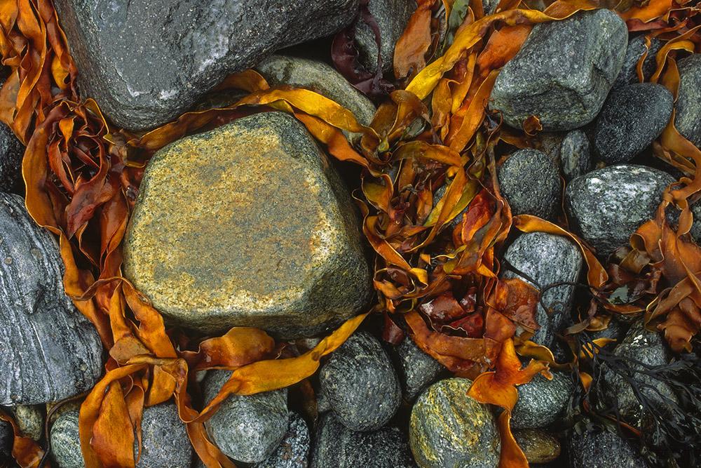 Versierde steen, Lofoten