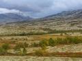 Doralseter, NP-Rondane