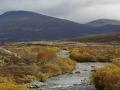 Snohetta-rivier, Dovrefjell