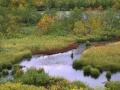 Herfstrivier met S-bocht, Zweeds lapland