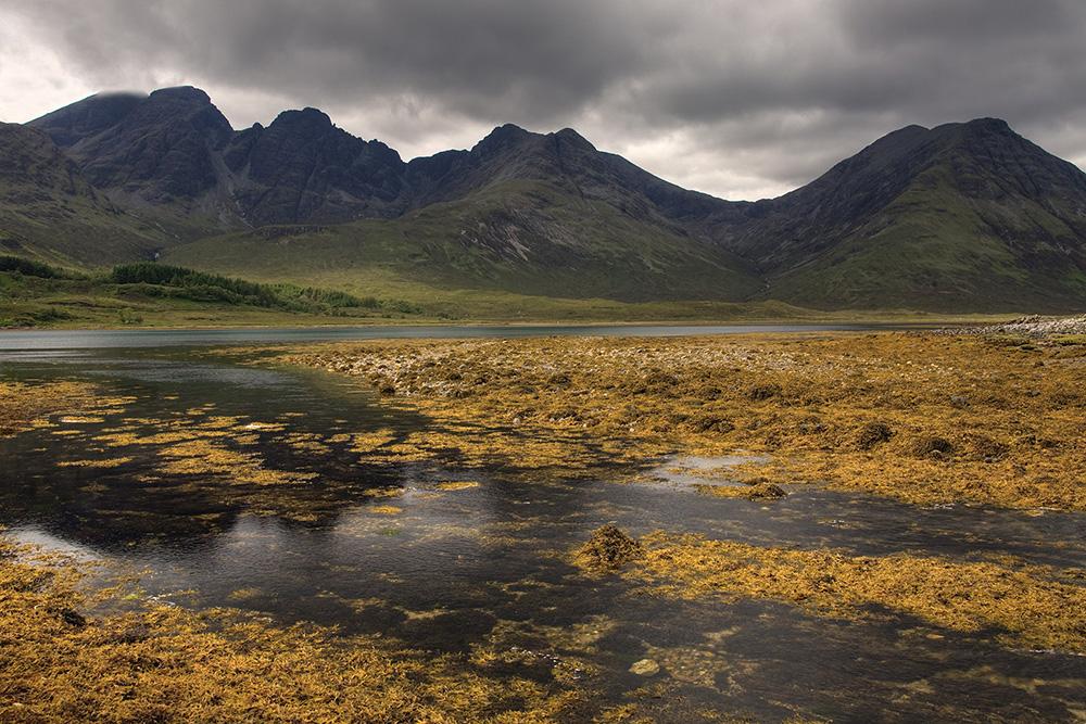 Loch met wieren, eiland Mull