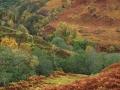 Herfst in Glen Roy