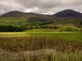 Loch met fonteinkruid, eiland Skye