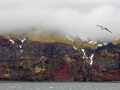 Jan Mayen, onderweg naar Spitsbergen