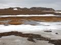 Smeltende sneeuw, Bereneiland