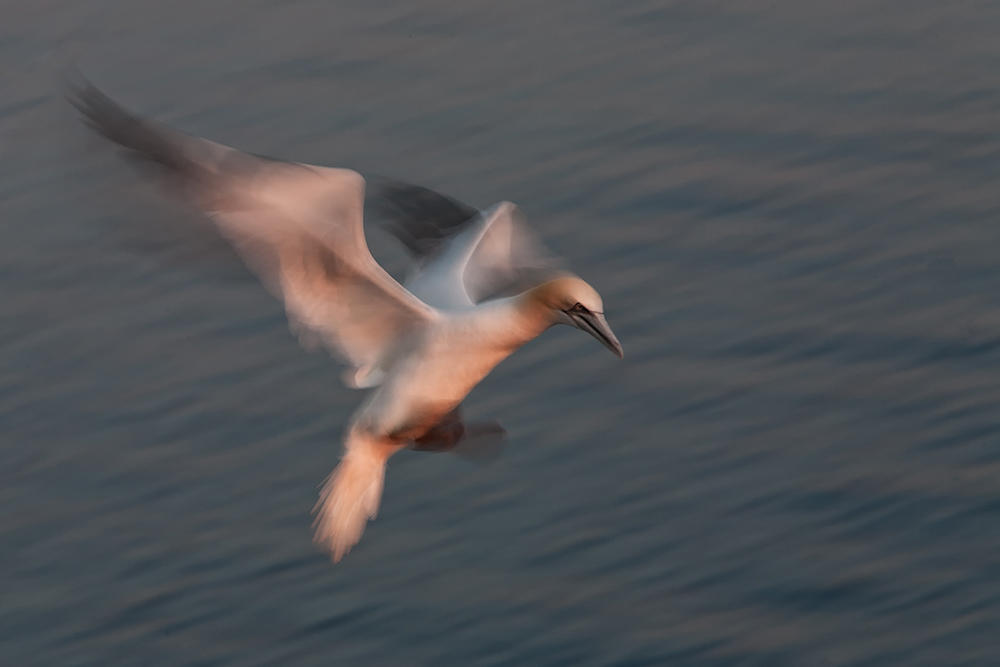 Jan van Gent in slow motion, Helgoland